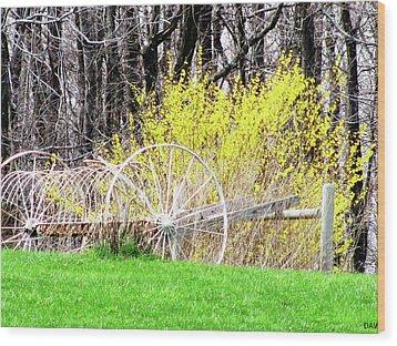 Countrified Spring Wood Print by Debra     Vatalaro