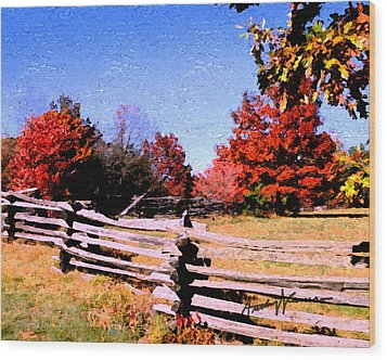 Country Autumn Wood Print by Anthony Caruso