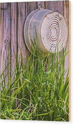 Country Bath Tub Wood Print by Carolyn Marshall