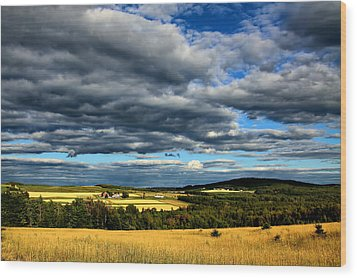 Wood Print featuring the photograph Country Farm by Gary Smith