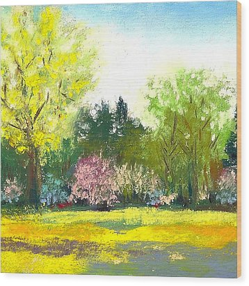 Country Garden Wood Print by David Patterson