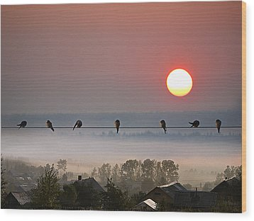Wood Print featuring the photograph Country Landscape by Vladimir Kholostykh