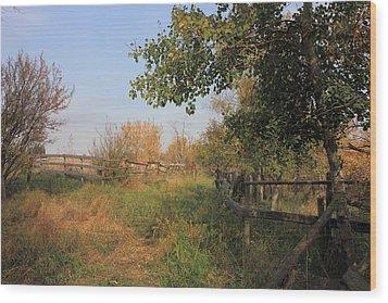 Country Lane Wood Print by Jim Sauchyn