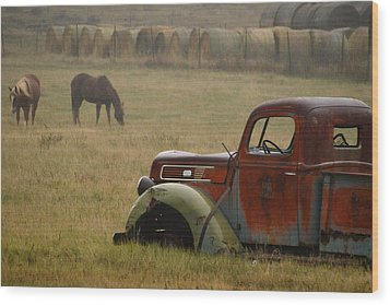 Wood Print featuring the photograph Country Life.. by Al Swasey