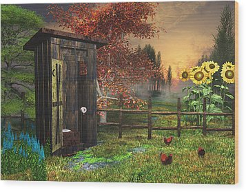 Country Outhouse Wood Print by Mary Almond