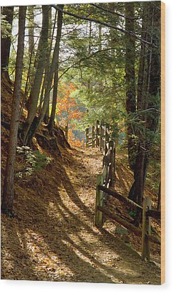 Wood Print featuring the photograph Country Path by Arthur Dodd