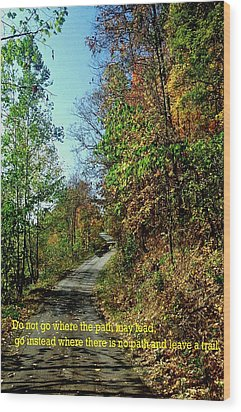 Country Path Wood Print by Gary Wonning