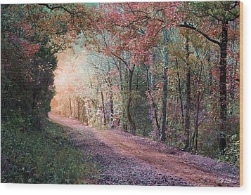 Country Road Wood Print by Bill Stephens