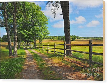 Country Road Wood Print by Catherine Reusch Daley
