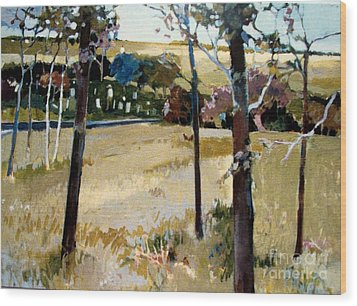 Wood Print featuring the painting Country Road by Diane Ursin