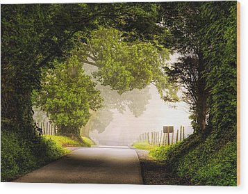 Country Road In The Smokies Wood Print by Andrew Soundarajan
