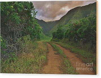 Country Road Kalaupapa, Molokai Wood Print