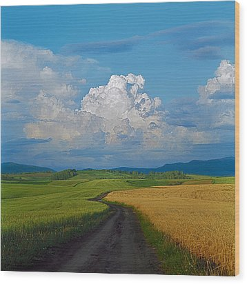 Country Road Wood Print by Pavel  Filatov