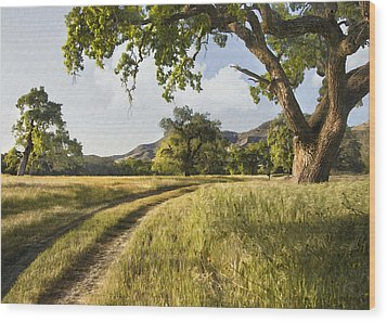 Country Road Wood Print by Sharon Foster