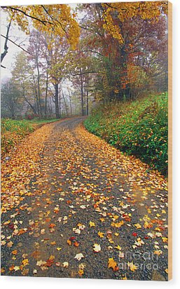 Country Roads Take Me Home Wood Print by Thomas R Fletcher