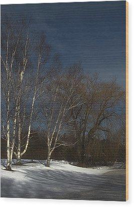 Country Roadside Birch Wood Print