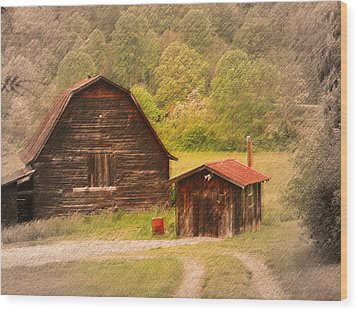 Country Shack Wood Print by Itai Minovitz