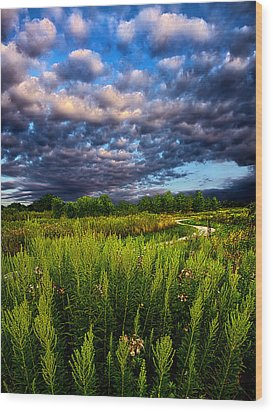 Country Strolling Wood Print by Phil Koch