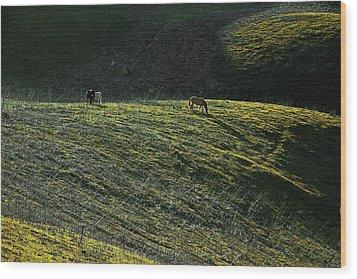 Country Sunset Wood Print by Viktor Savchenko