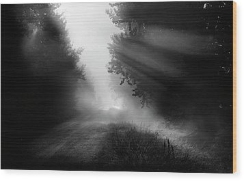 Wood Print featuring the photograph Country Trails by Dan Jurak