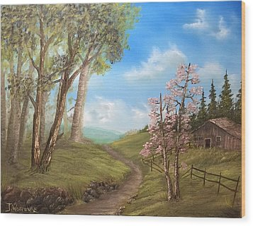 Country Valley  Wood Print