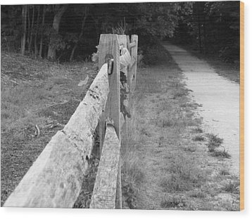 County Fence  Wood Print by D R TeesT