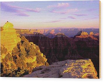 Couple Enjoys Grand Canyon Sunset Wood Print by Alan Lenk