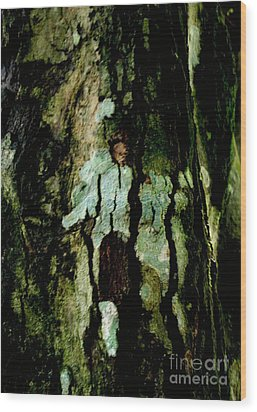 Couple On A Tree Wood Print