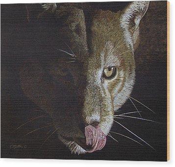 Cougar Night Wood Print