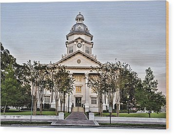 Courthouse In Moultrie Wood Print by Jan Amiss Photography