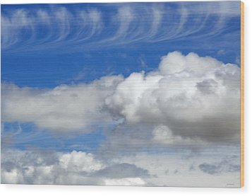 Courting Clouds Wood Print by Gwyn Newcombe
