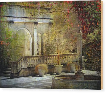 Wood Print featuring the photograph Courtyard by John Rivera