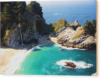 Cove And Mcway Falls Wood Print by Michael Courtney
