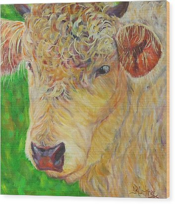 Cute And Curly Cow Wood Print