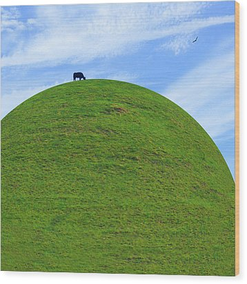 Cow Eating On Round Top Hill Wood Print by Mike McGlothlen