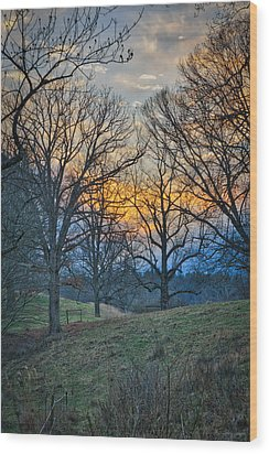 Cow Pasture At Dusk Wood Print