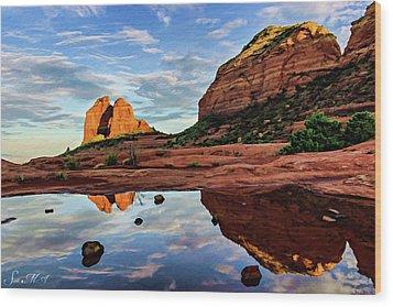 Cowpie 07-081 Wood Print by Scott McAllister