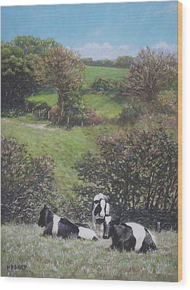Wood Print featuring the painting Cows Sitting By Hill Relaxing by Martin Davey