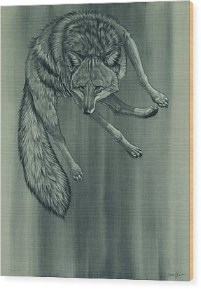 Wood Print featuring the digital art Coyote by Aaron Blaise