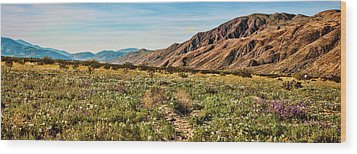 Coyote Canyon Meadow View Wood Print