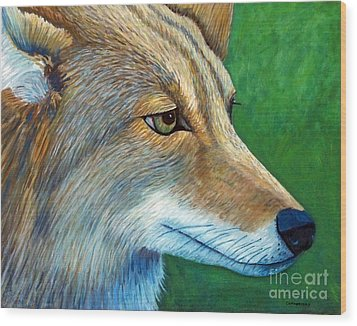 Coyote Logic Wood Print by Brian  Commerford