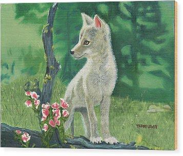 Coyote Pup Wood Print by Terry Lewey