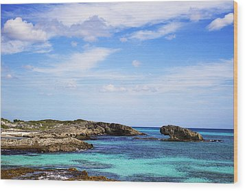 Cozumel Mexico Wood Print by Marlo Horne