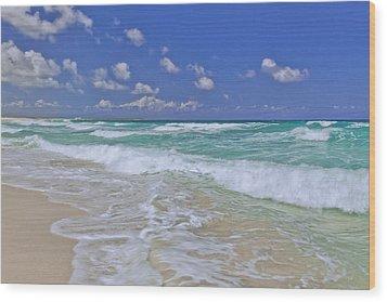 Cozumel Paradise Wood Print by Chad Dutson