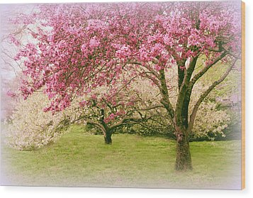 Wood Print featuring the photograph Crabapple Confection by Jessica Jenney