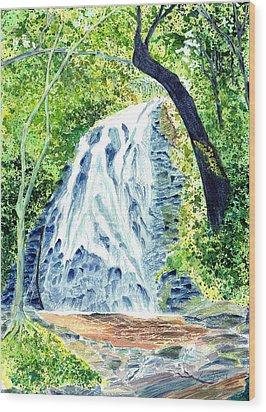 Crabtree Falls - Phantom Of The Blue Ridge Wood Print by Joel Deutsch