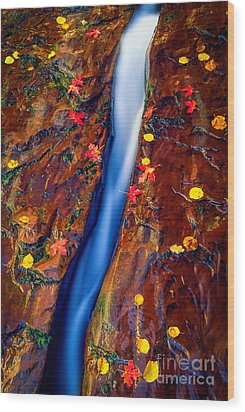 Crack In The Rock Wood Print by Inge Johnsson