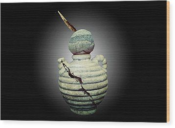 Crackpot Ninja Warrior From Maine Wood Print