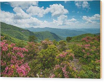 Craggy Gardens Blue Ridge Parkway Stunning Vista Wood Print