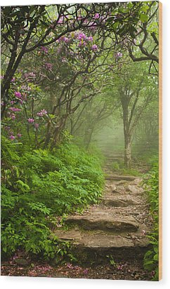 Craggy Steps Wood Print